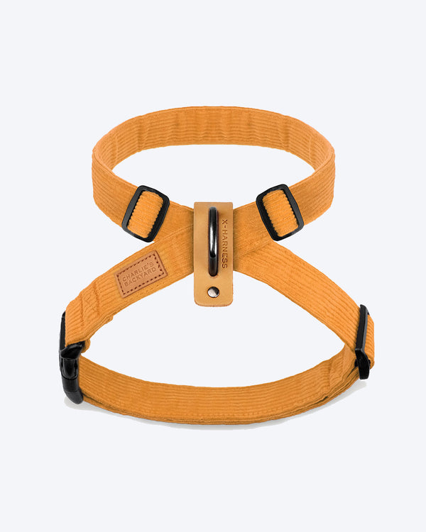 FIELD X-HARNESS BY CHARLIE'S BACKYARD. YELLOW CORDUROY AND ADJUSTABLE.