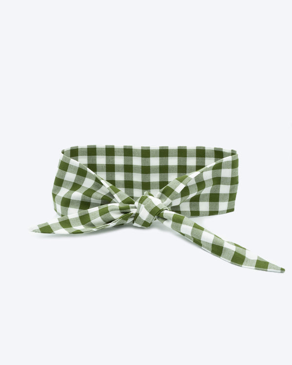 Dark green gingham necktie for dogs and cat. Like a rolled bandana but less fuss.