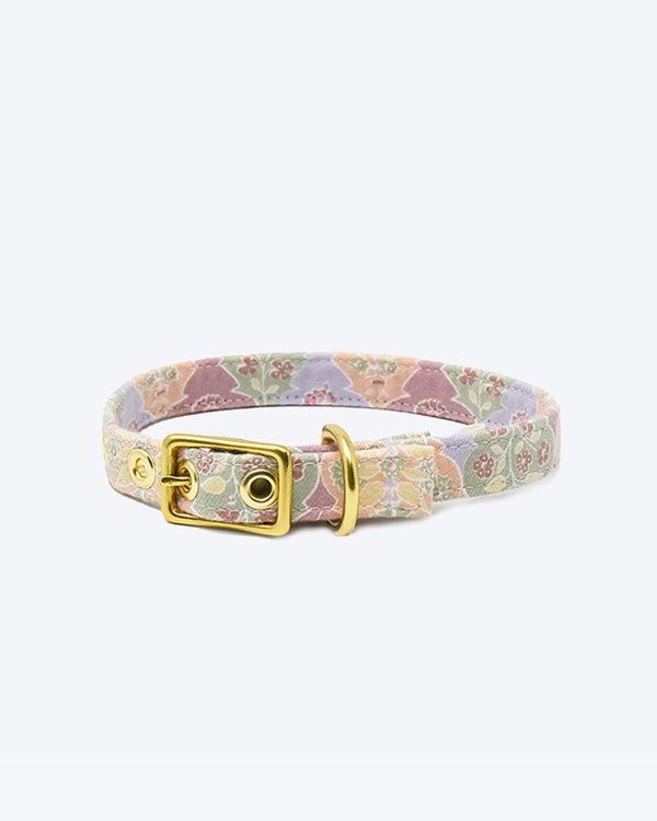 Floral pastel collar by honey paws walk leash dog flowers gold