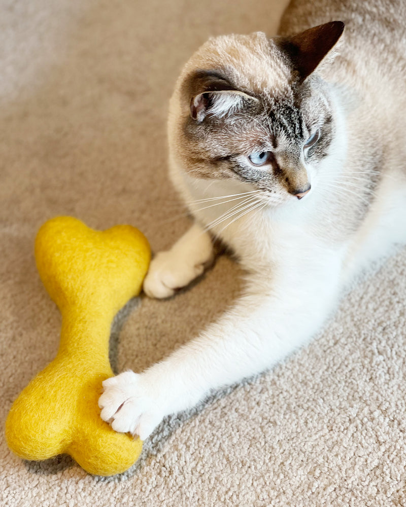 CAT BONE MADE OF 100% ORGANIC WOOL FELT DENSELY PACKED. ECO FRIENDLY. DURABLE. SMALL AND LARGE. INCLUDES ORGANIC CATNIP. YELLOW. PICTURED WITH CAT