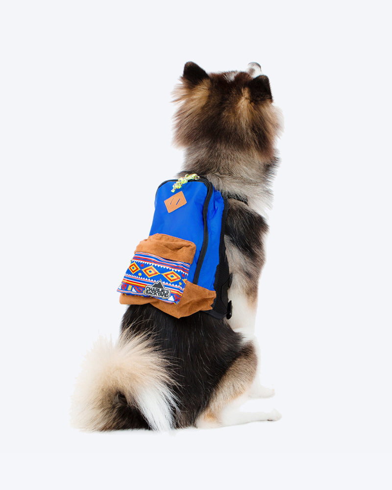 CHARLIES BACKPACK BY CHARLIE'S BACKYARD. BLUE DOG BACKPACK WITH HARNESS STRAPS. SMALL, MEDIUM, LARGE. SHOWN ON A LARGE FLUFFY DOG.