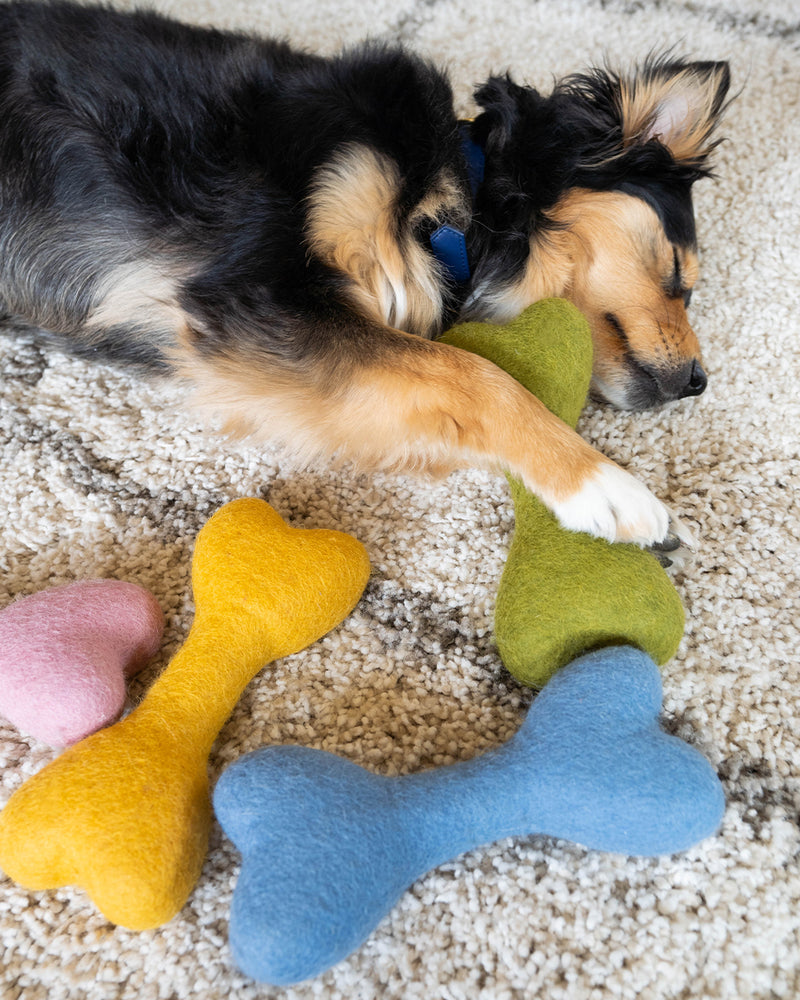 DOG BONE MADE OF 100% ORGANIC WOOL FELT DENSELY PACKED. ECO FRIENDLY. DURABLE. SMALL AND LARGE. GREEN, YELLOW, PINK, BLUE HELD BY AUSSIE MIX.