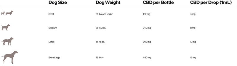 Pet CBD for dogs. Calm Pet CBD Drops for small, medium, large, x-large dogs. Prospect Farms.