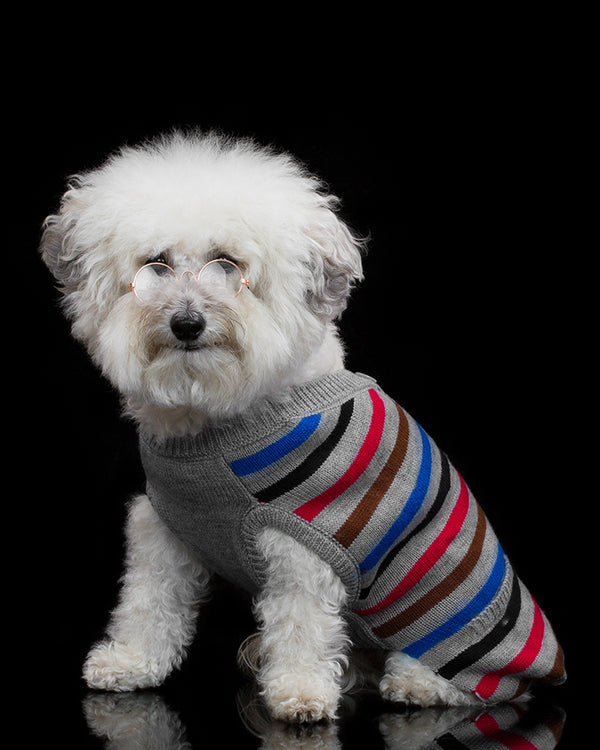 Blue Striped Cardigan by Worthy Dog
