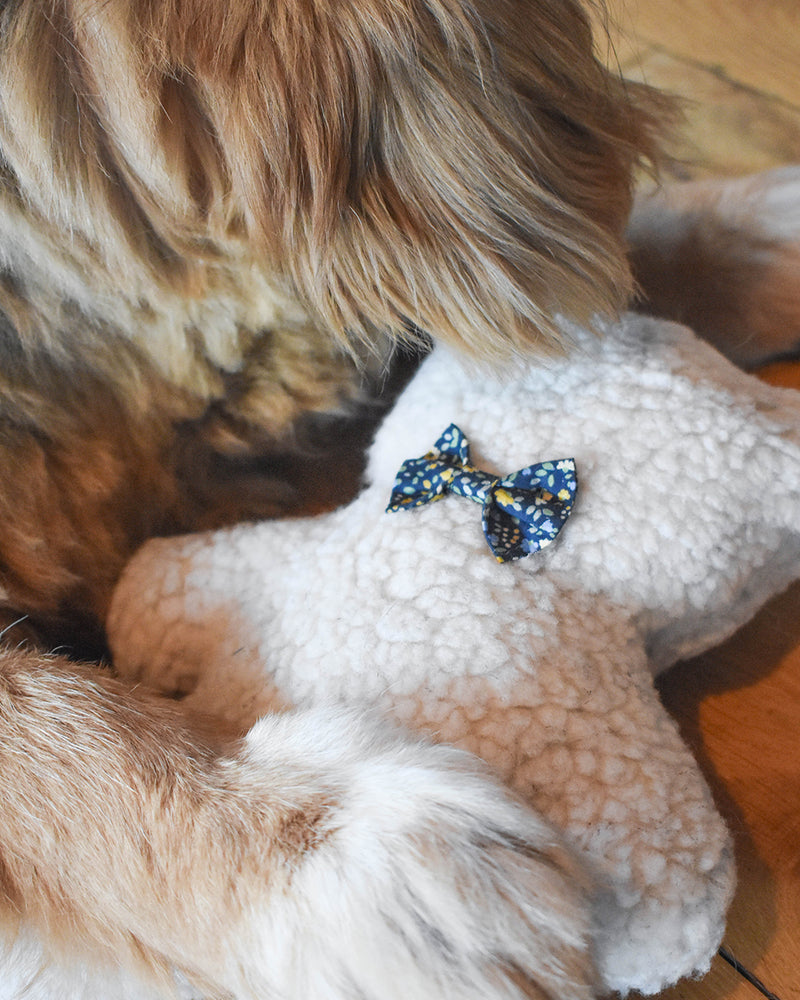 Plush Dog Toy filled with 100% organic lavender to help calm your pet. Wearing a midnight floral bowtie. Designed to give back 100%.