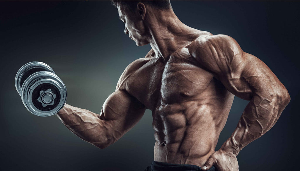3 Reasons You're Not Shredded