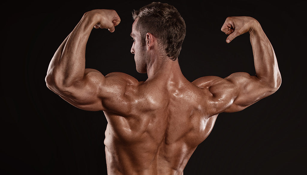 Build A Massive Back: 5 Essential Back Moves