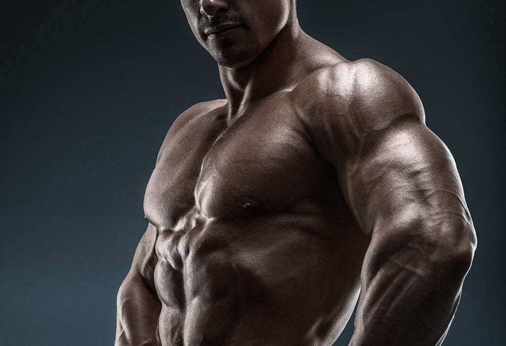 The Secrets to Building Muscle