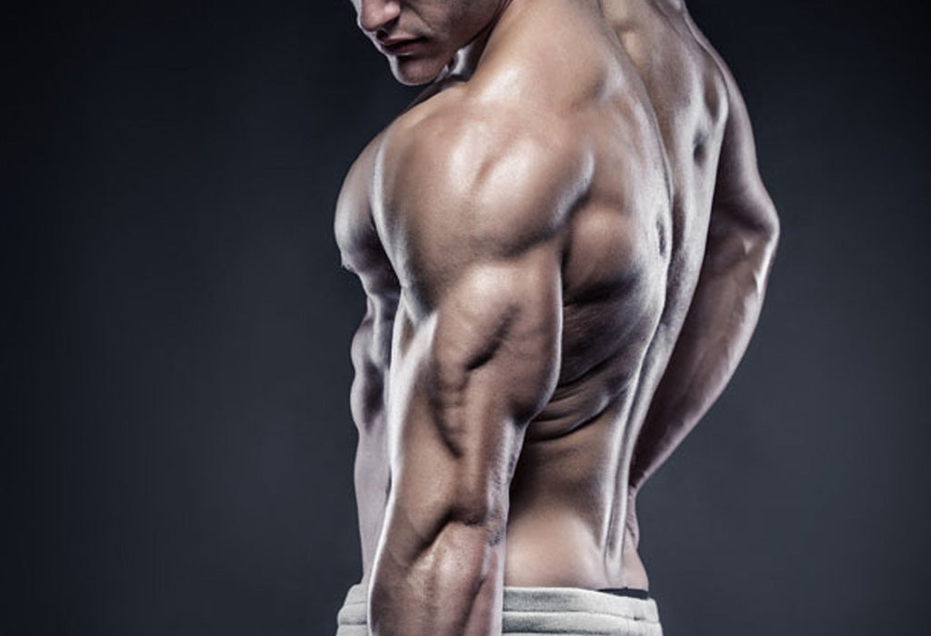 Top 3 Exercises To Build Massive Triceps