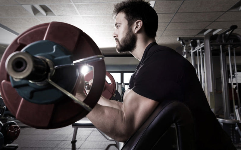 What are the best exercises for building big biceps?
