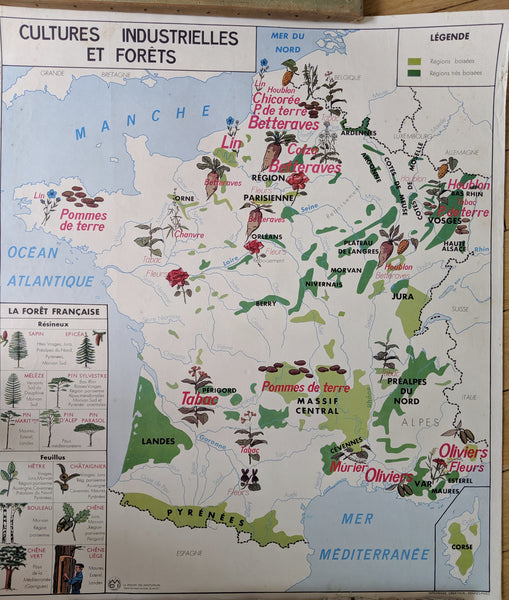 Vintage Map of France and the Loire Valley