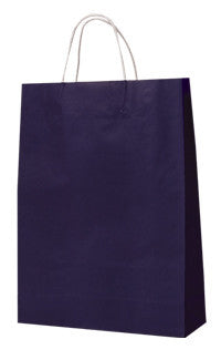 Carnival Carry Bag - Passion Purple Small PPS