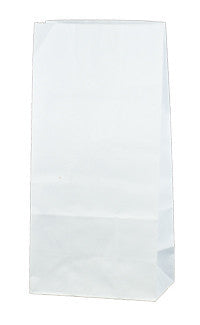 Carnival Gift Paper Bag - Medium White SOS2W