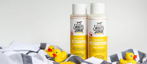 Skout S Honor Pet Products