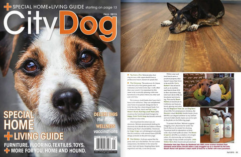 Skout's Honor Stain and Odor Eliminator Featured in City Dog Magazine at Fall 2015