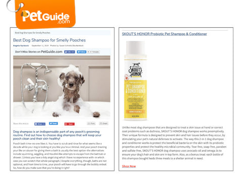 Best Dog Shampoos Feature in PetGuide.com