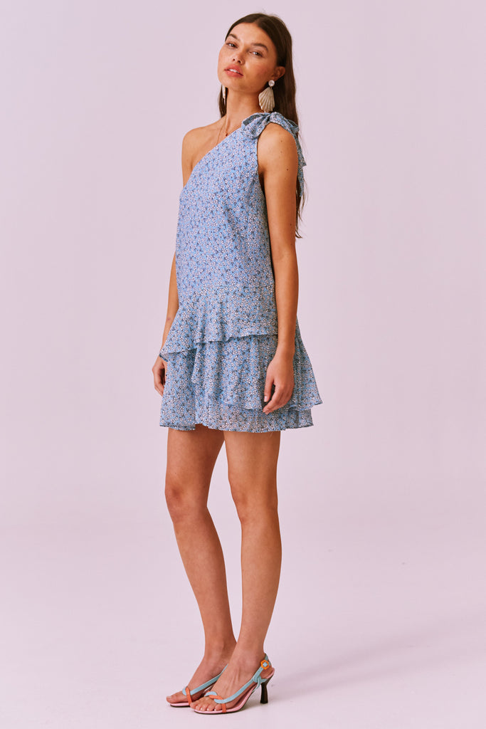 BLOSSOM MINI DRESS blue floral