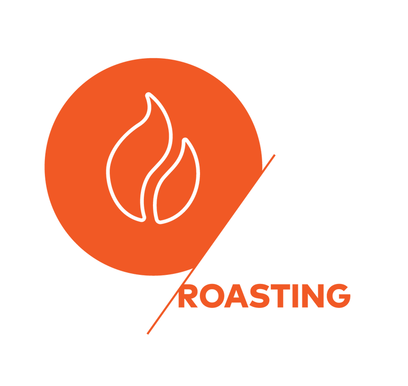 SCA Roasting - Foundation
