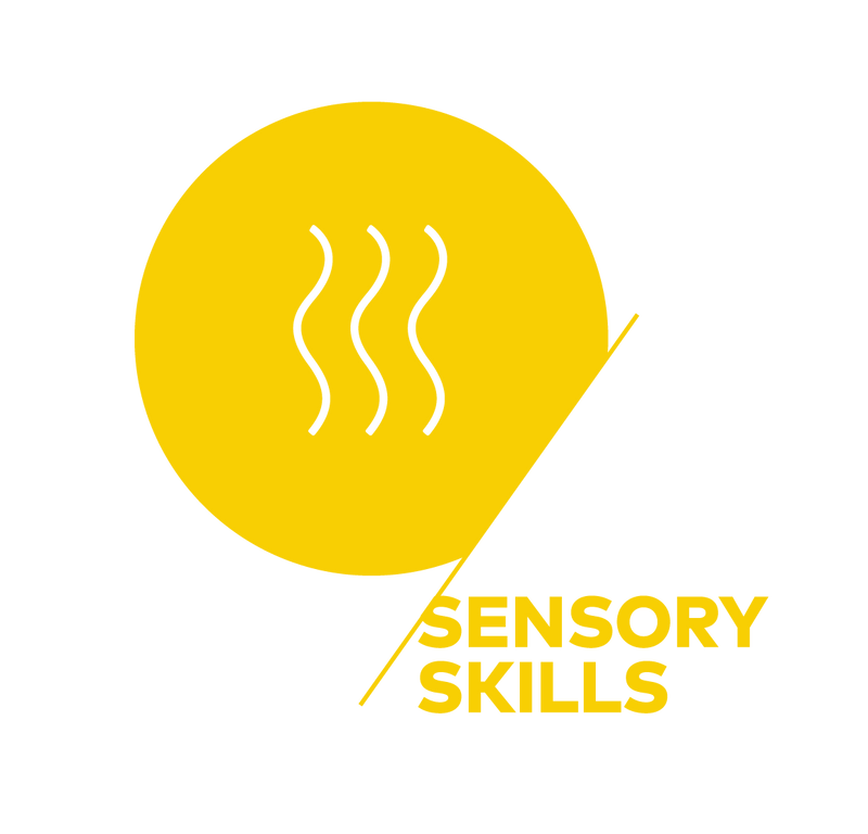 SCA Sensory Skills - Foundation