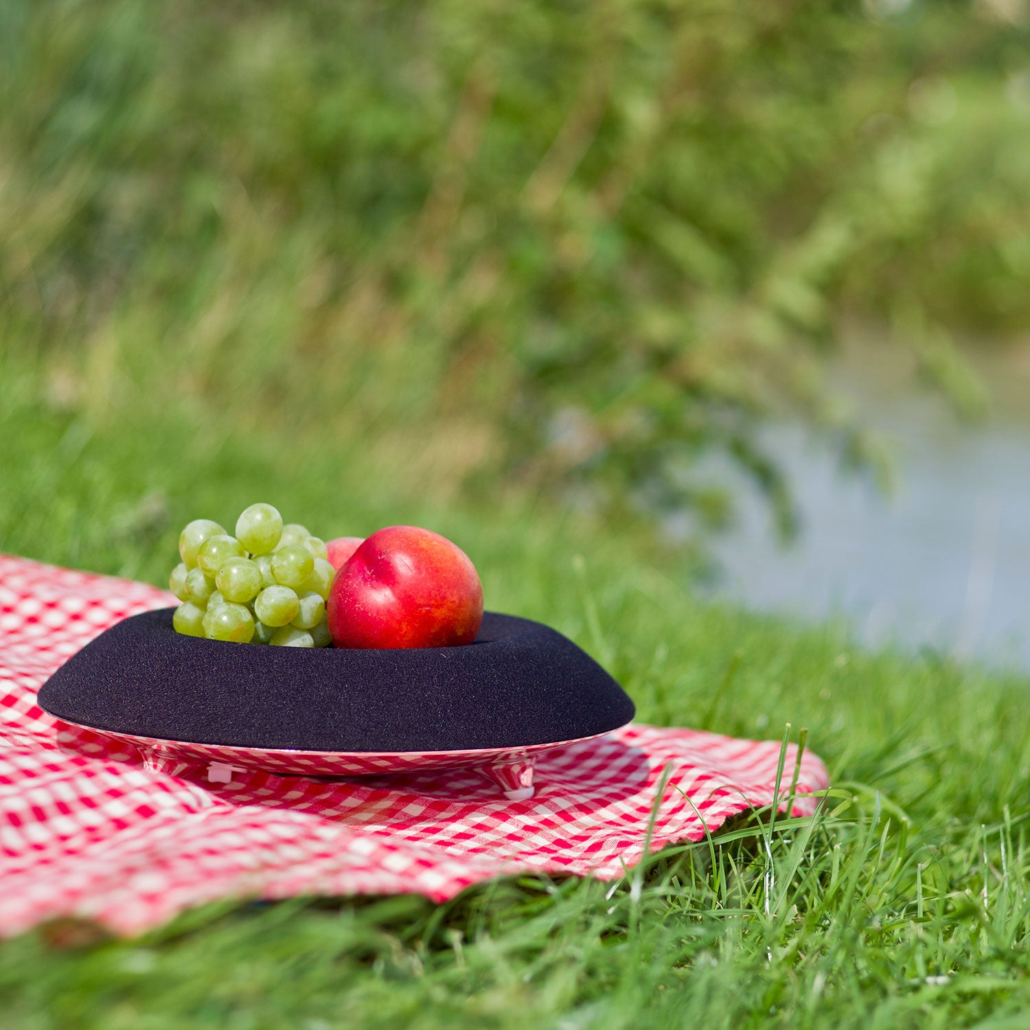 Summertime is picnic time