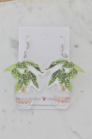 A Acrylic Crazy Pot Plant Drop Dangle Earrings