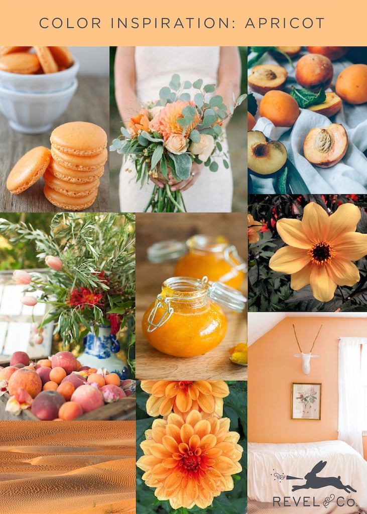 Revel & Co's Color Inspiration: Apricot