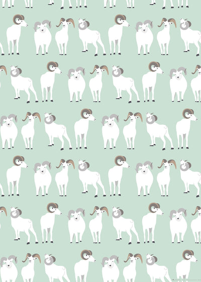 Dall sheep wrapping paper by Revel & Co.