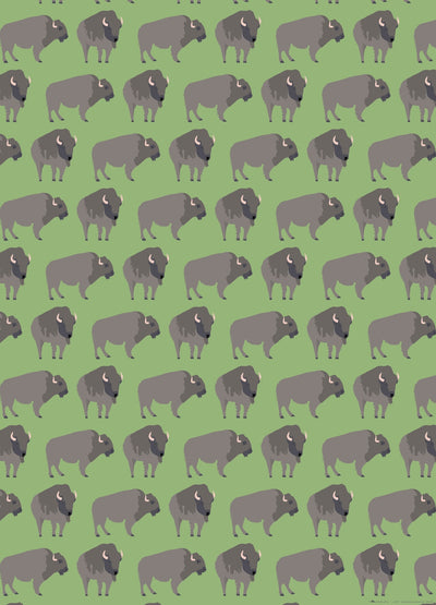 Buffalo gift wrap by Revel & Co.