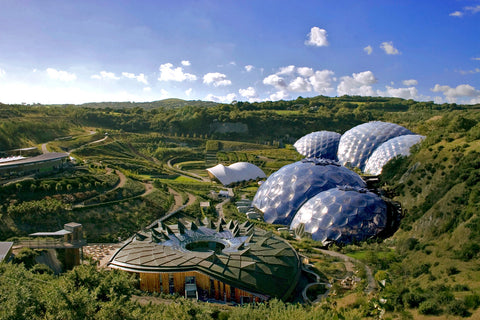 Chloe Tinsley, artist, Cards at Eden Project, Cornwall