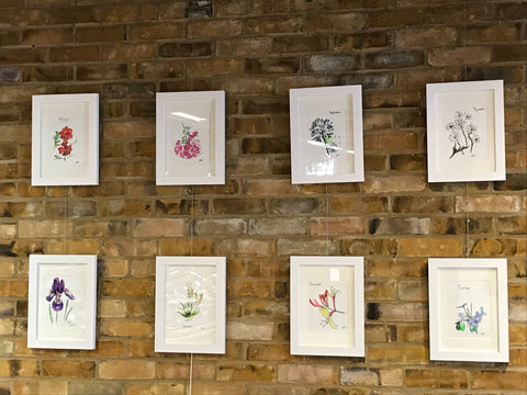 Chloë Gallery botanics limited edition prints