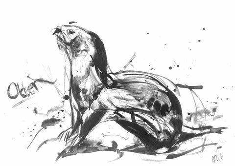 'Otter' - Wildlife Prints