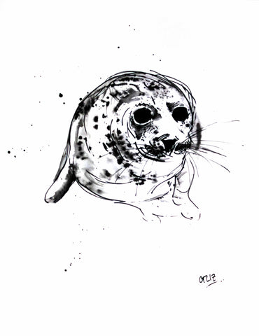 Seal Eyes, Grey Seal, Chloë Tinsley, Chloe Art, Wildlife Drawings and Prints, Seal, Seal Art, Grey Seal Drawing, Seal Ink, Seal illustration, Seal Art, Seal Painting, Cornish Seal, animal art, wild art