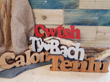 Diolch Thanks Wood Block Word