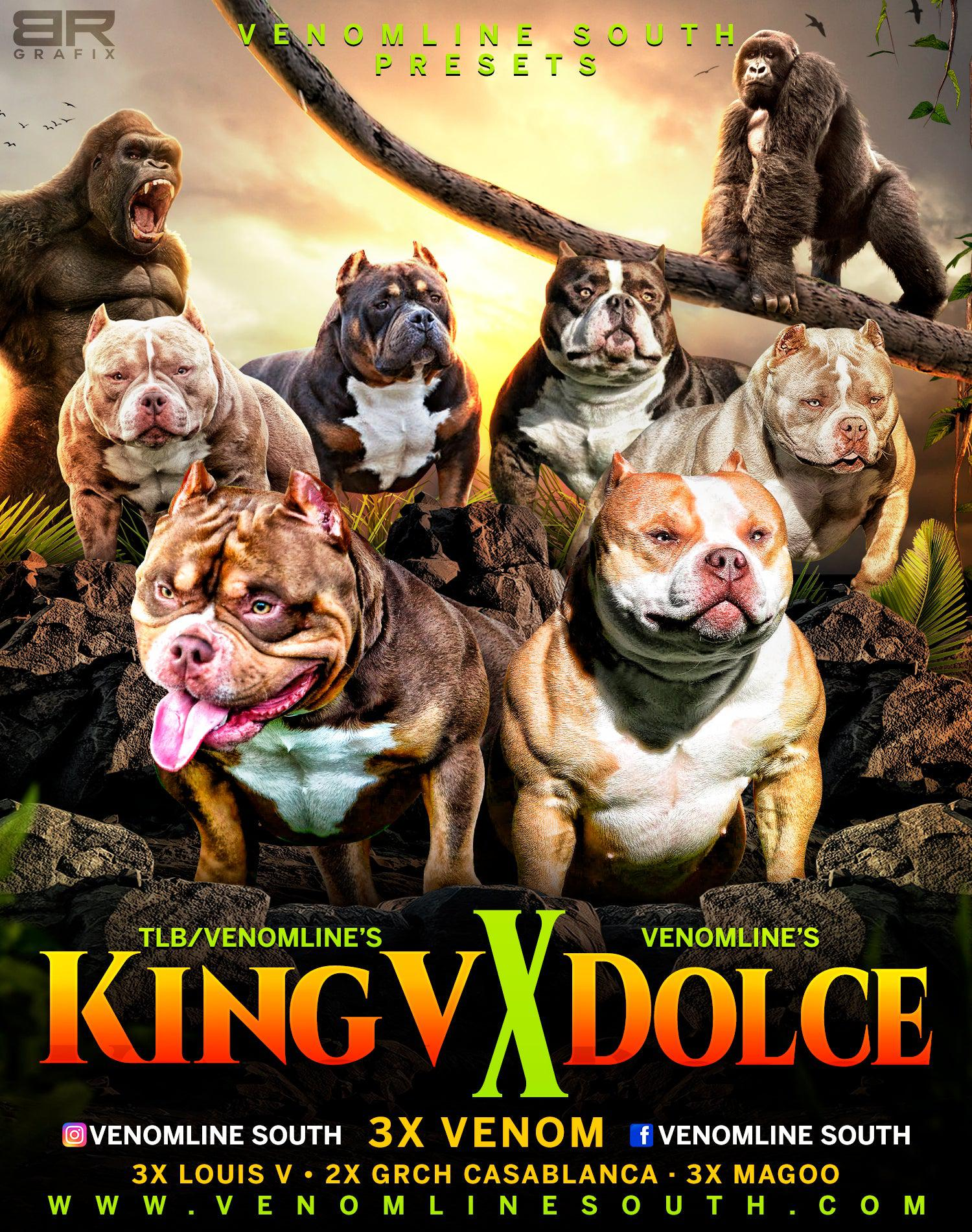 Extreme Pocket & Micro Bullies, #1 Rated Pocket Bully Breeders, Champion Bloodlines, Top American Bully Kennels, American Bully Breeders, Puppies For Sale