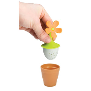 Taylors Eye Witness LECB0201 Flower Pot Tea Infuser - Various Colours