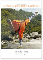 Your Complete Guide To Shaolin Kung Fu