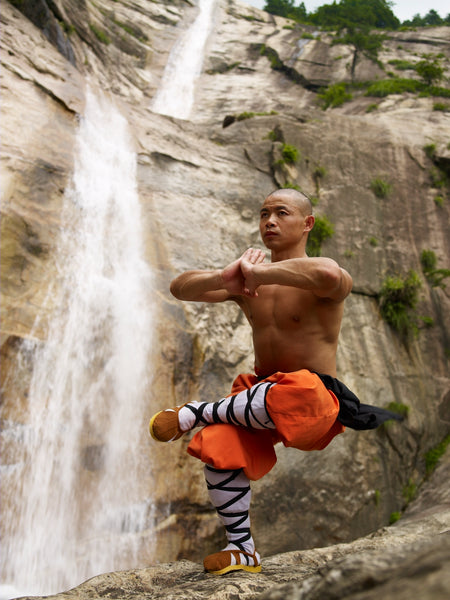 My Home Value >> How Shaolin Monks Defy Depression, Disease and Early Death ...