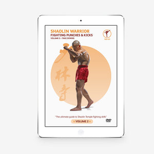 Fighting Punches And Kicks Vol. 2 (Download) - shifuyanlei.myshopify.com