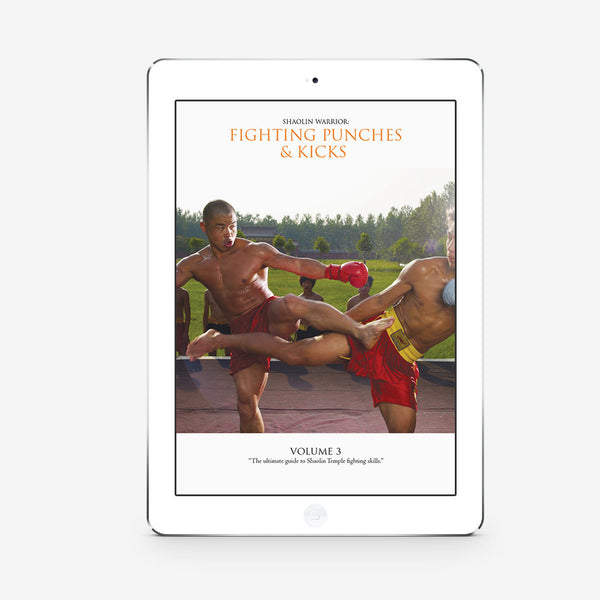 Fighting Punches And Kicks Vol. 3 (Download)