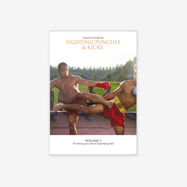 Shaolin Warrior: Fighting Punches And Kicks Vol #3
