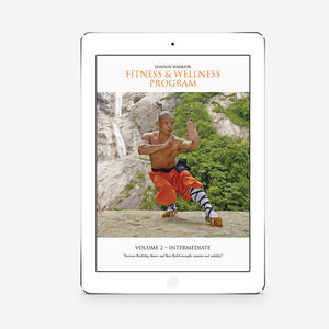 Shaolin Fitness And Wellness Program  - Level 2 (Download) - shifuyanlei.myshopify.com