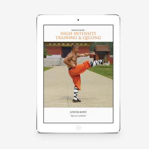 Shaolin Burn: High Intensity Training And Qigong: Lower Body (Download) - shifuyanlei.myshopify.com