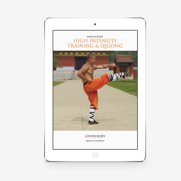 Shaolin Burn: High Intensity Training And Qigong: Lower Body (Download)