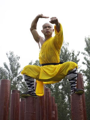 Online Training Course – Novice Shaolin Monk 20 Day Workout - shifuyanlei.myshopify.com