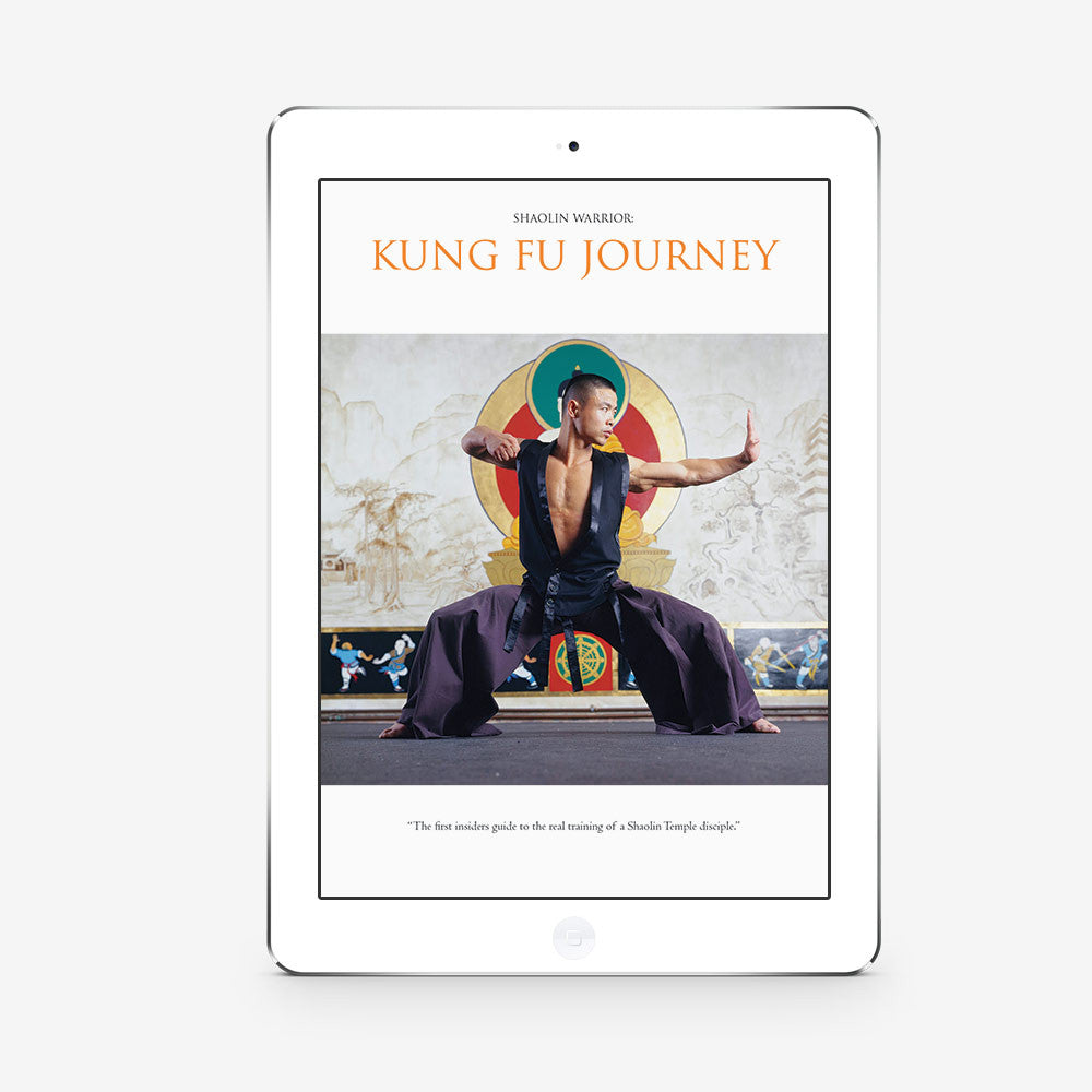 Kung Fu Journey – (Download) - shifuyanlei.myshopify.com