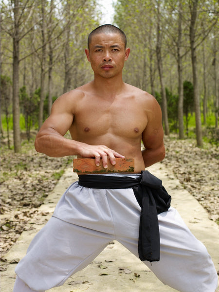 Online Training Course - Iron Shirt - Shaolin Steel Jacket - shifuyanlei.myshopify.com