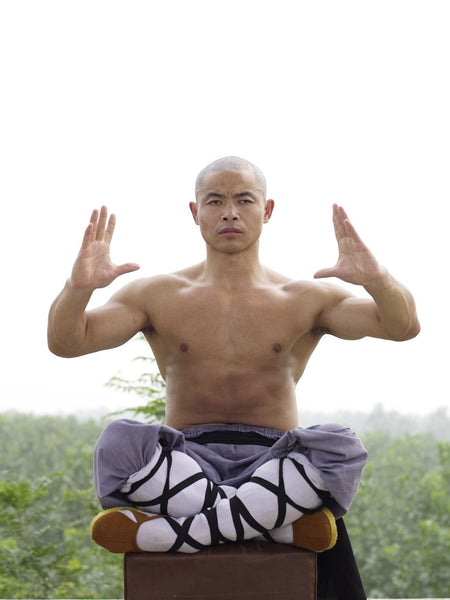 Online Training Course – Xi Sui Jing (Bone Marrow Cleansing) Qigong - shifuyanlei.myshopify.com