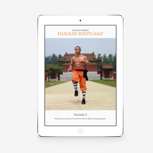 Shaolin Bootcamp Vol. 2 (Download) - shifuyanlei.myshopify.com