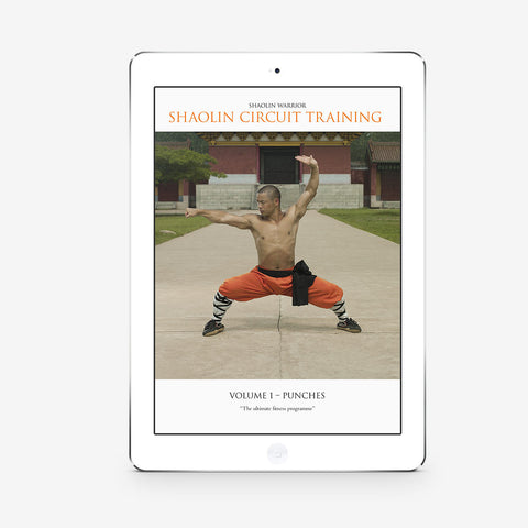 Shaolin Circuit Training Vol. 1 – Punches ( Download)