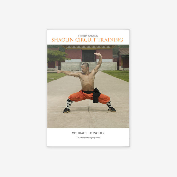 Shaolin Circuit Training Vol. 1 – Punches - shifuyanlei.myshopify.com